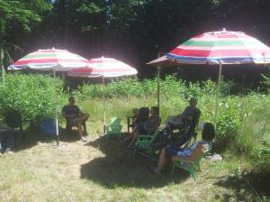fun in the sun (shade)