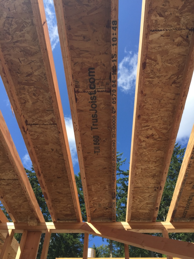 Here's a view of what those trusses look like from down below...I'm sure they'll be standing them up on Monday.