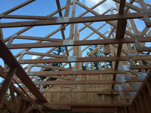 A view of the trusses from below.