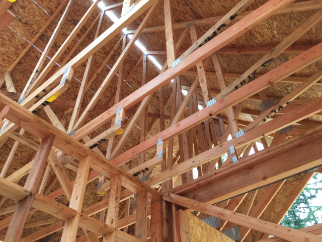 Quite a bit of the roof sheathing went on this week.