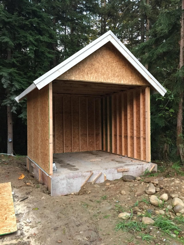 Oh yeah, and they built the well house today! Isn't it cute?