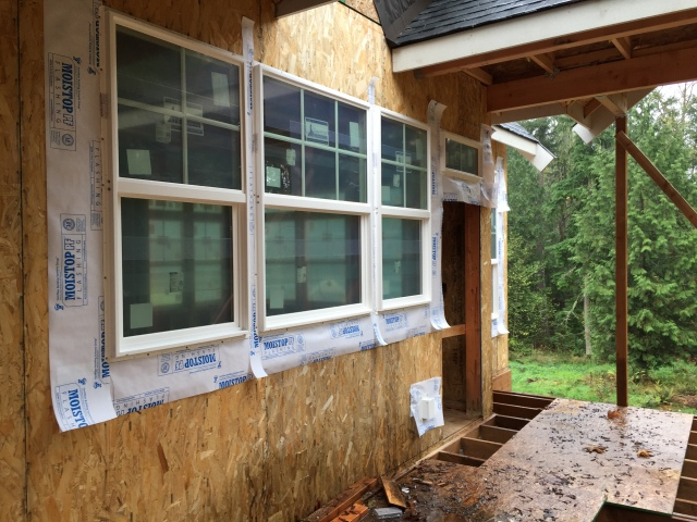 Here's what the windows look like from the outside of the house. These ones are above the kitchen sink area.